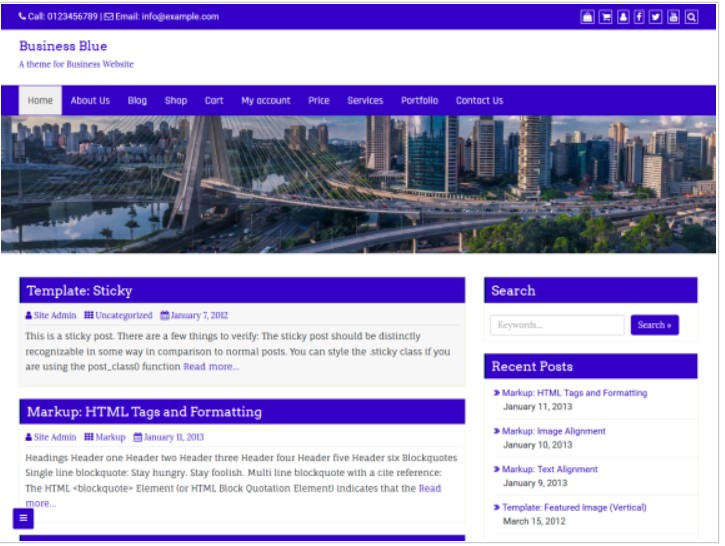 Business blue theme for affiliate marketing