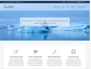Guten theme for business