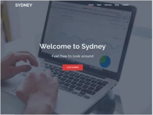 Sydeny WordPress theme