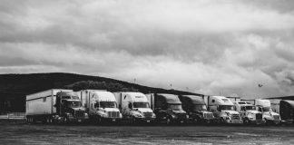 fleet management for business growth